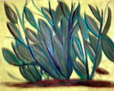 An_eye_on_the_plants.jpg