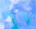 Blue_Lilly.JPG